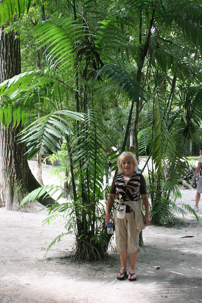 Guatemala Tikal 0 162.JPG