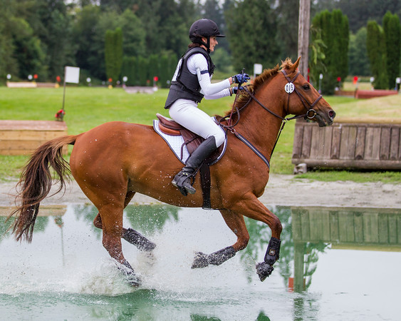 Equestrian - Mrs T. Memorial Horse Trials - MREC, July 2019