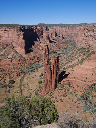 Canyon de Chelly and Petrified Forest