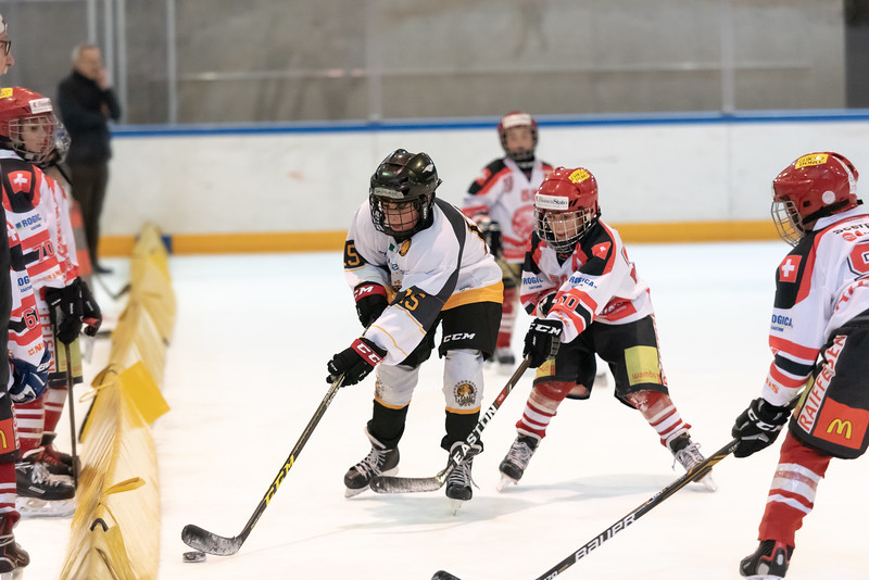 Torneo Piccolo - GDT Bellinzona - HCAP - HC Ascona - HC Varese