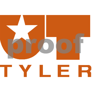 ut-tyler-to-offer-new-professional-certification