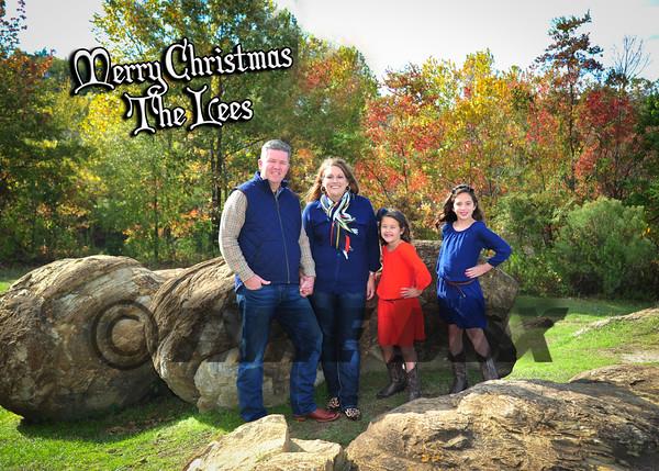 Lee Family 2015