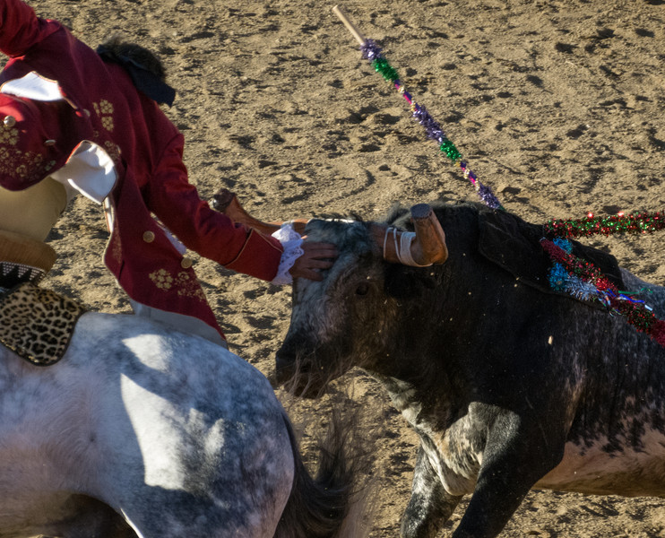Cavaleiro Luis Rouxinol reaches back to pat the head of the angry rushing bull while it's chasing him!