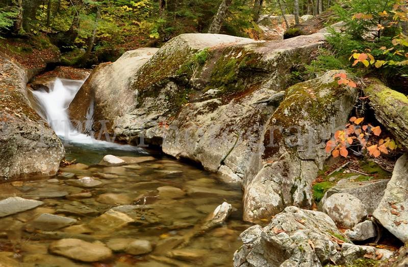 Autumn in New Hampshire III