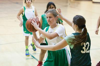 Basketball (JV Gold Cypress) vs. SF Christian   Jan. 22, 2014