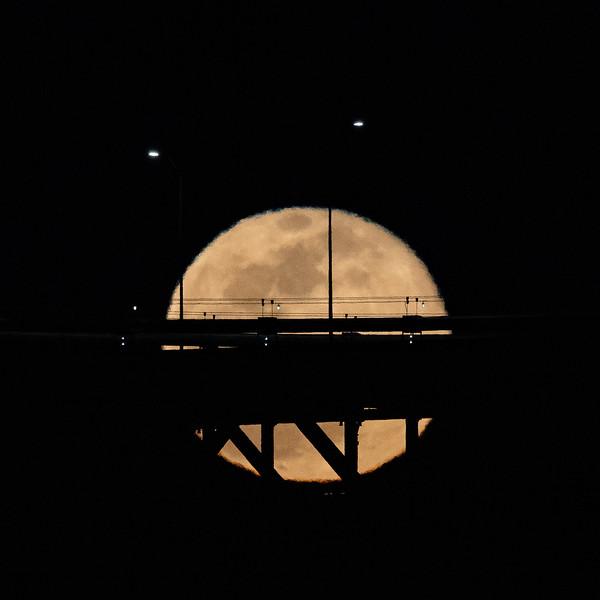 Moon Albums