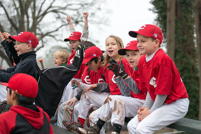 NYO Reds Baseball