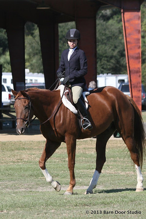 Coastal Island Horse Show Photos