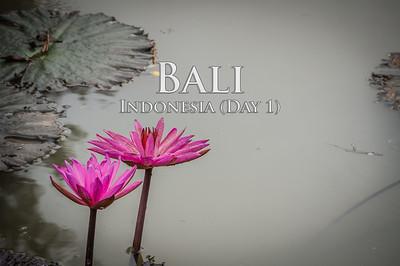 2015-02-26 - Bali
