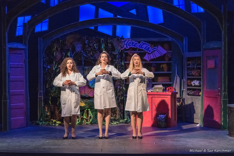 Little Shop of Horrors 2018 HR-3.jpg
