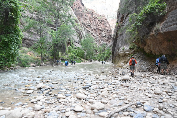 Zion - Narrows Hike