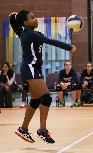VCA-Volleyball-35.jpg