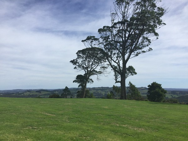 Southern Highlands - Sandra Brackenbury