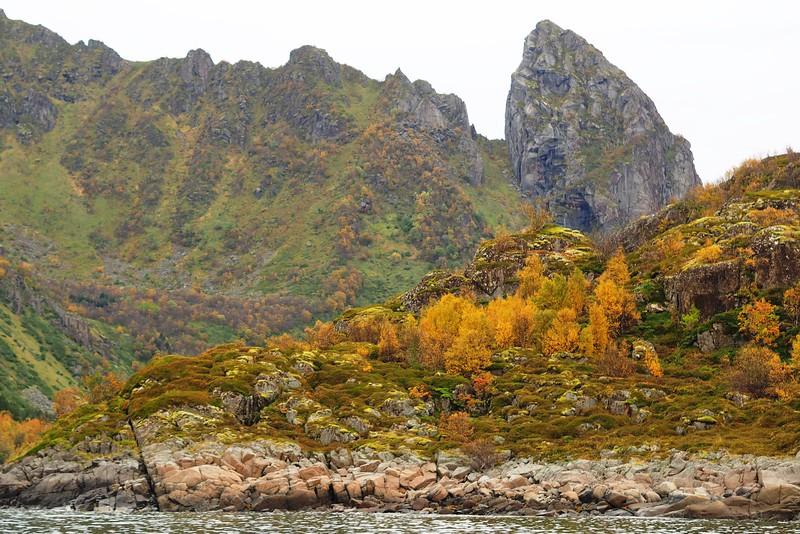 Cruise to Trollfjorden (25).JPG