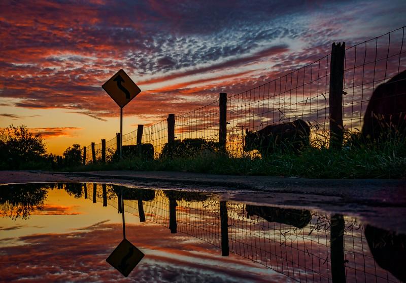 sunset - roadside puddle(p,intense).jpeg