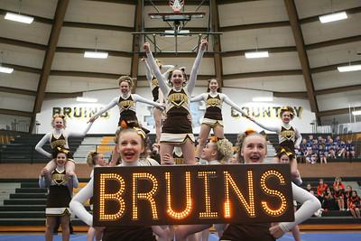 Fargo South Bruins