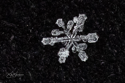 snowflakes-1228.jpg