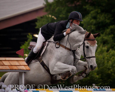 Tryon Summer Classic 2014