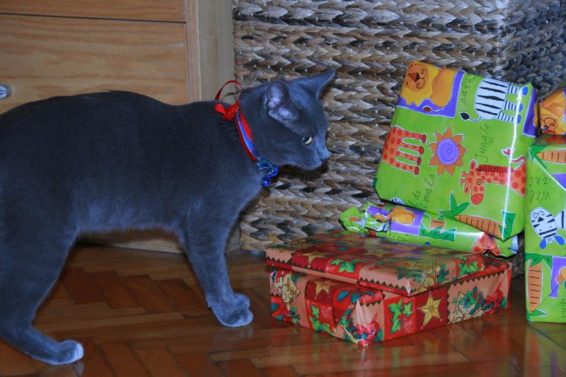 Natale 2009_20091224_0009.JPG