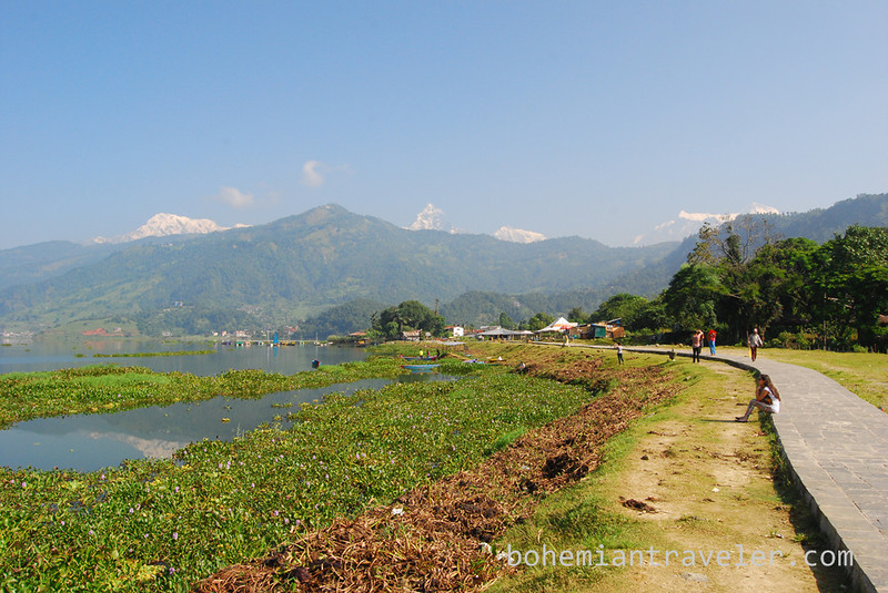 trail along the shore of Phewa Tal in Pokhara Nepal.jpg