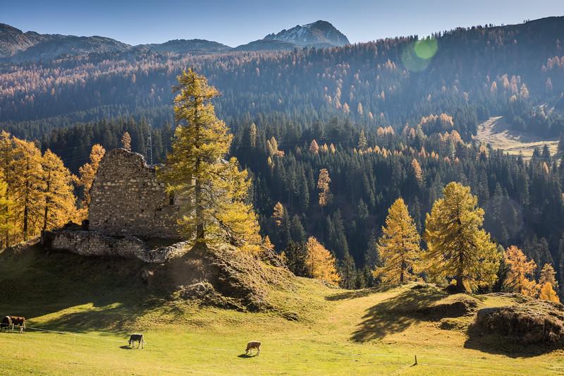 Herbst-Rheinwald-Sufers-Aebli-11.jpg
