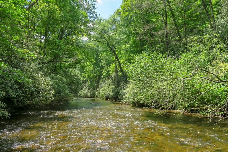 South Fork Mills River (Crossing #3) -- 2,360'