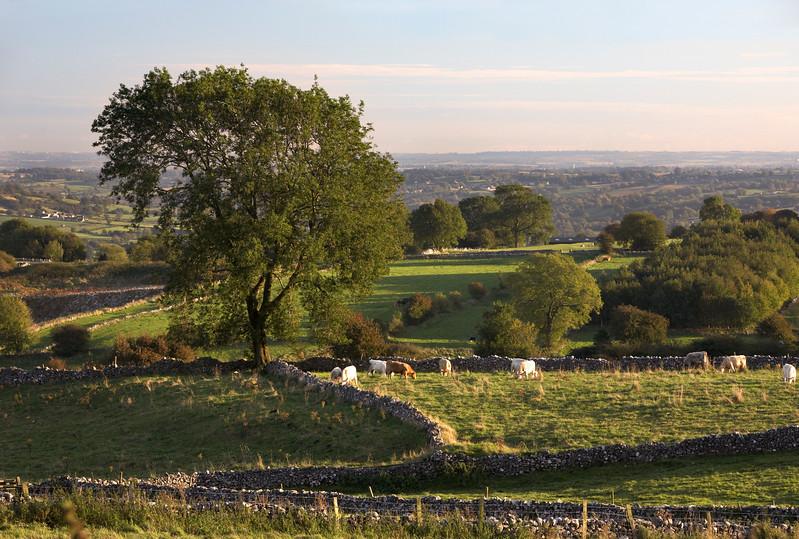 Derbyshire - 8125.jpg