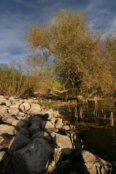Lake Elizabeth 102_filtered.jpg