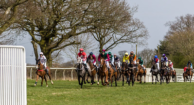 Race 3 - The PPORA Club Members Conditions Race - Novice Riders