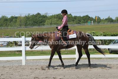 Western Equitation, j12