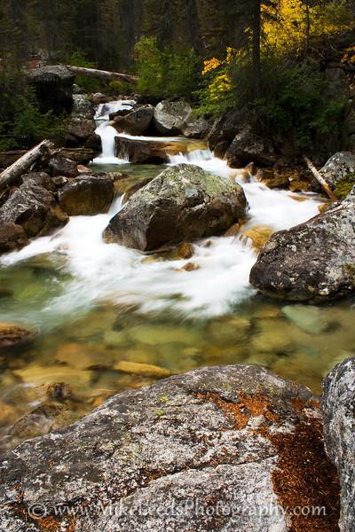Redfish Lake Creek