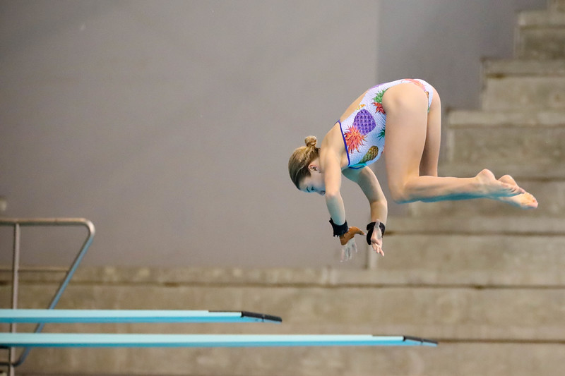 Singapore_National_Diving_Championship2018_2018_07_01_Photo by_Sanketa Anand_610A8419.jpg