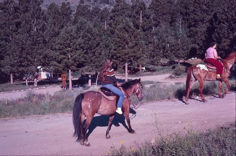 1984 08 Wolf creek pass 2.jpg
