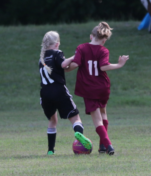 Virginia Soccer Festival 2015