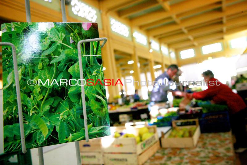 067-Market_Zone2014.jpg