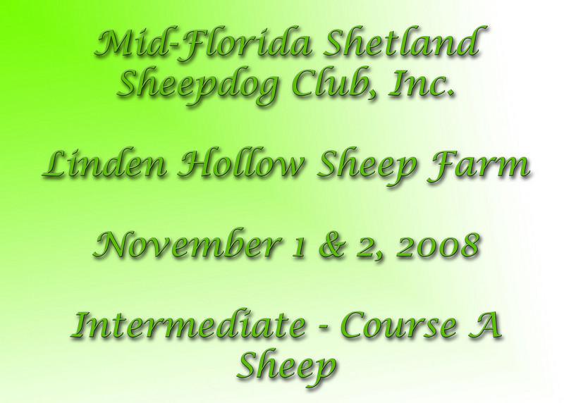 Intermediate-A-Sheep-sign.jpg