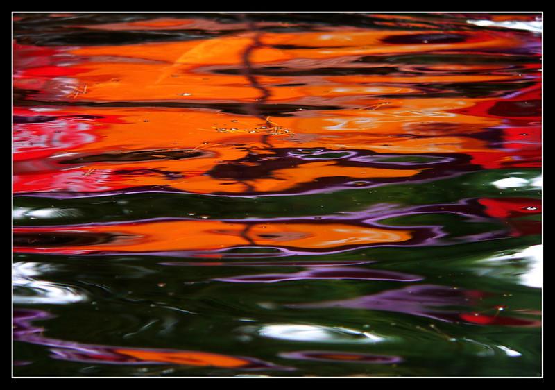 06FR23  La Bugue Acquario Perigord Noir 339.jpg