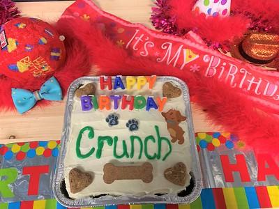 Crunch's 4th Birthday