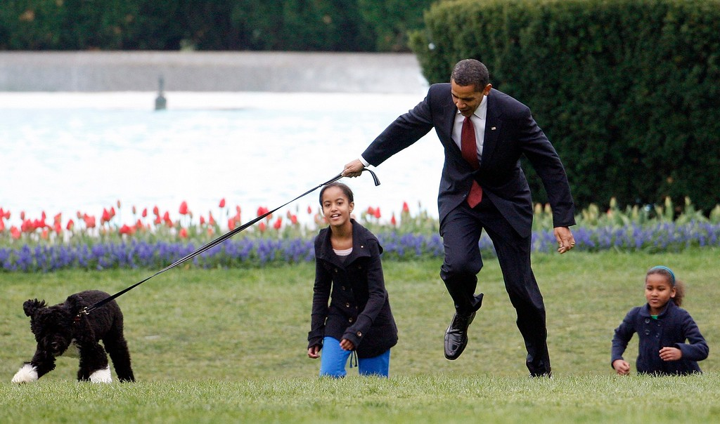 . President Barack Obama is almost jerked off his feet as he shows off their new dog  Bo, Tuesday, April 14, 2009, a 6-month-old Portuguese water dog with his daughters Malia, left, and Sasha Obama, right, on the South Lawn of the White House in Washington, Tuesday, April 14, 2009. (AP Photo/Ron Edmonds)