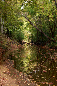 Lanana Creek027