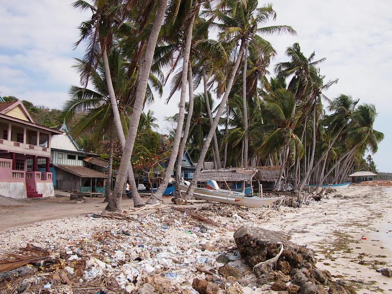 P9109149-beach-rubbish.JPG