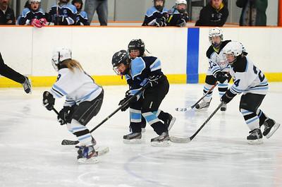10U Girls vs. Ice Spirits (9-March-2014)