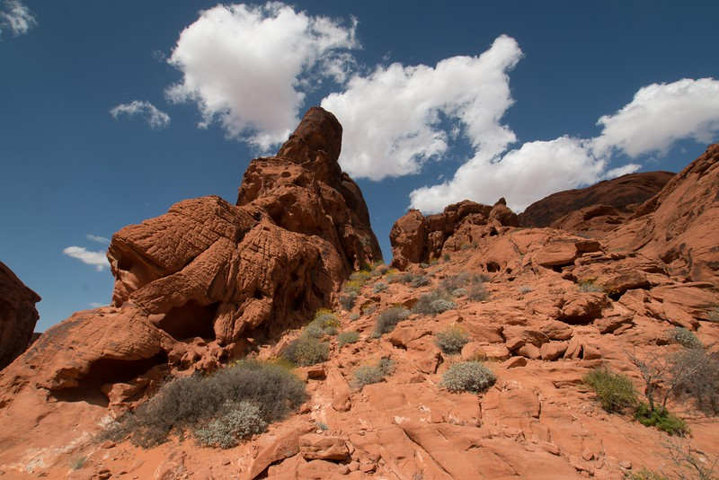 valley of fire (1 of 1)-31.jpg
