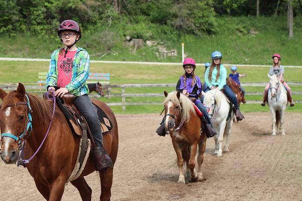 2019 Junior 1 and Horsemanship 1