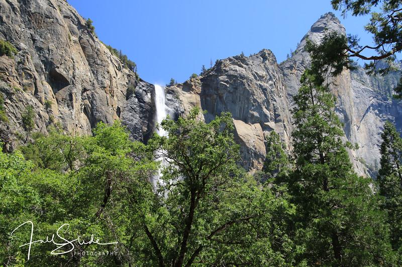 Yosemite 2018 -34.jpg