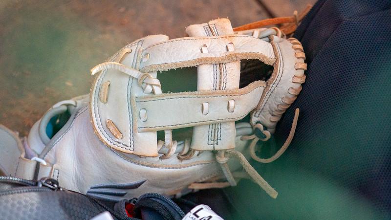 glove D2005917.jpg