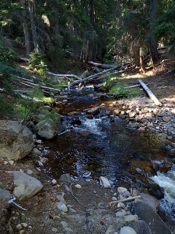 Gardner Peak Skylakes Wilderness Oregon