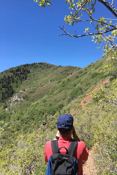 Gandeur Peak Trail (15).jpg