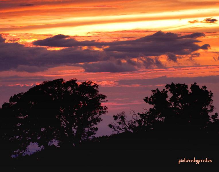 sunset1931.jpg