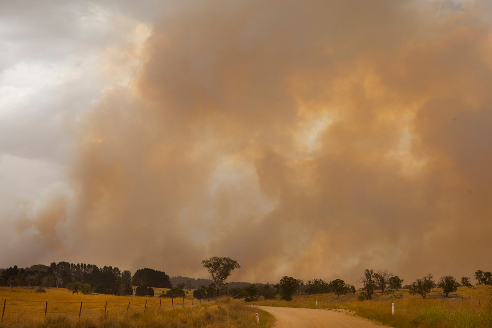 . Smoke rises as fires rage in the Kybeyan Valley, New South Wales on January 8, 2013 in Nimmitabel, Australia. NSW was declared a total fire ban with the Illawarra, Shoalhaven and Southern Ranges regions placed on \'Catastrophic\' alert.  (Photo by Pamela Martin/Getty Images)